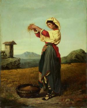 La cernita del grano